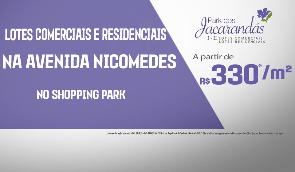 banner-jacarandas-330