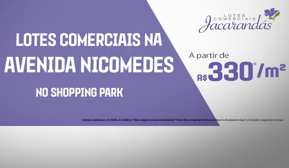 Jacarandás 330
